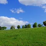隣の芝生は青く見える? それは成功の予兆かも!