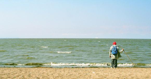ひとりで海を見つめる人